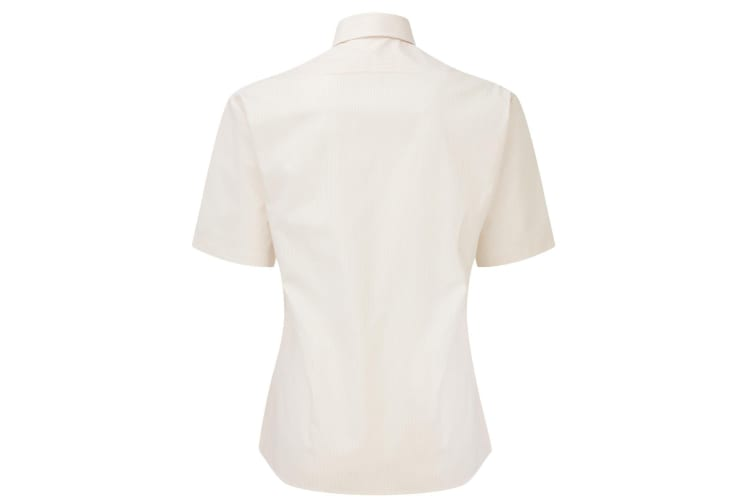 Caldene Womens/Ladies Finberry Competition Show Shirt (Cream) (12.5 Inch)