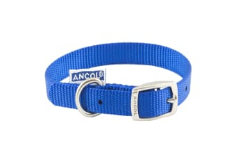Ancol Pet Products Heritage Buckle Fasten Weatherproof Dog Collar (Blue)