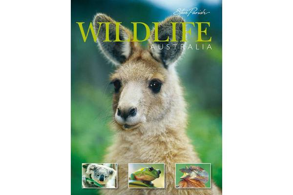 Australian Wildlife A Souvenir Of