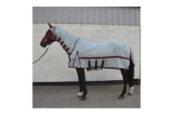 Hy Guardian Fly Rug And Fly Mask (Silver) (6�' 9�'�')