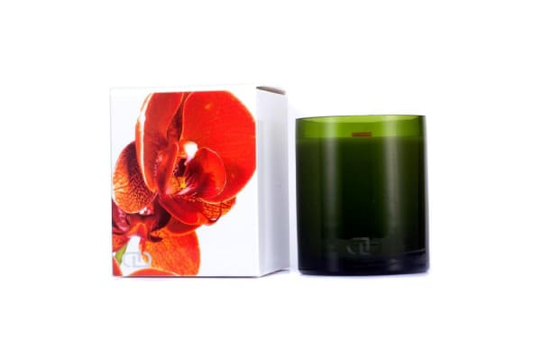 DayNa Decker Botanika Multisensory Candle with Ecowood Wick - Clementine (170g/6oz)