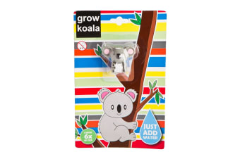 Grow A Koala Novelty Gift Fairy 6x Larger