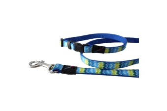 Hem & Boo Zig Zags Pattern Nylon Puppy Dog Collar & Lead Set (Blue) (10mm x 20-30cm (120cm))