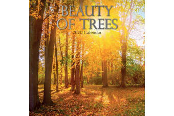 Beauty of Trees 2020 Premium Square Floral Wall Calendar 16 Months New Year Gift