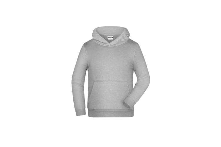 James And Nicholson Childrens/Kids Basic Hoodie (Grey Heather) (XS)