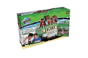 Wild! Science Ant Jungle Large