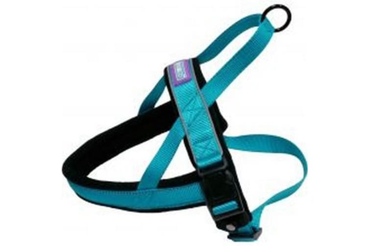 Hemm & Boo Nordic Padded Dog Harness (Aqua) (24-30 Inch)