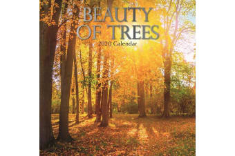 Beauty of Trees - 2020 Wall Calendar 16 month Premium Square 30x30cm (CC)
