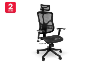 2 Pack Ergolux EZ8 Ergonomic Mesh Office Chair