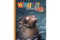 Water Animals - Seals, Squids, Fish, & More!