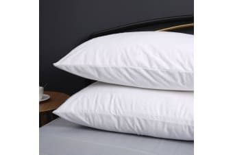 Cotton Terry Towelling Waterproof Pillow Protector--Twin Pack