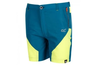 Regatta Childrens/Kids Sorcer Mountain Shorts (Sea Blue/Lime Punch) (13 Years)
