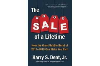 The Sale Of A Lifetime - How the Great Bubble Burst of 2017-2019 Can Make You Rich