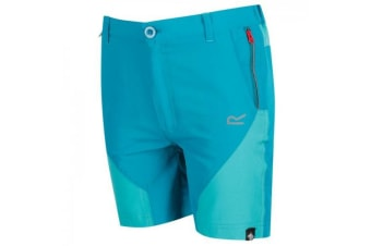 Regatta Childrens/Kids Sorcer Mountain Shorts (Enamel/Ceramic) (11-12 Years)