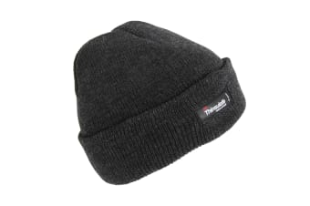 Childrens/Kids Thinsulate Heatguard Thermal Beanie Hat (Grey)