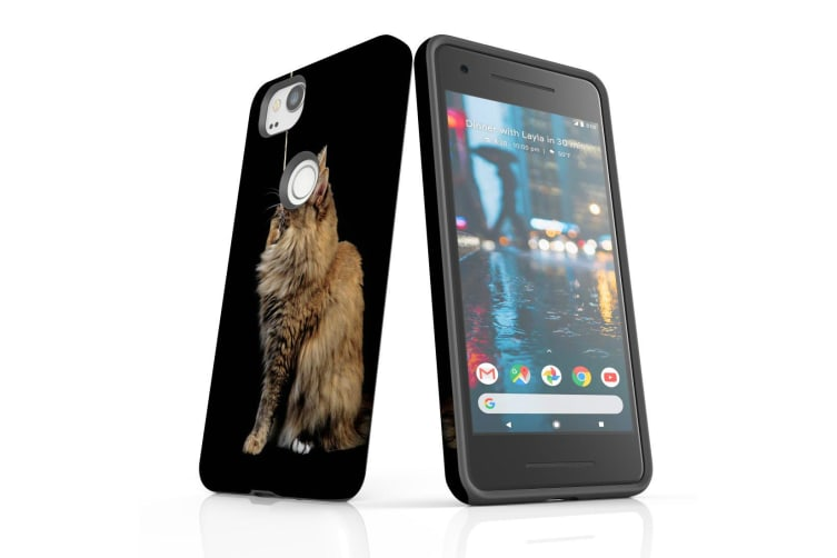 For Google Pixel 2 Case  Protective Back Cover  Playing Maine Coon