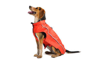 Dog Gone Smart NanoBreaker Dog Raincoat (Red)