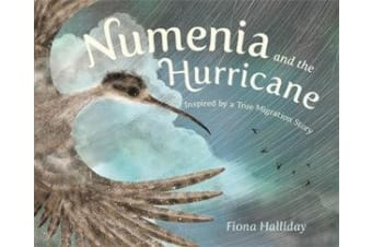 Numenia and the Hurricane - Inspired by a True Migration Story