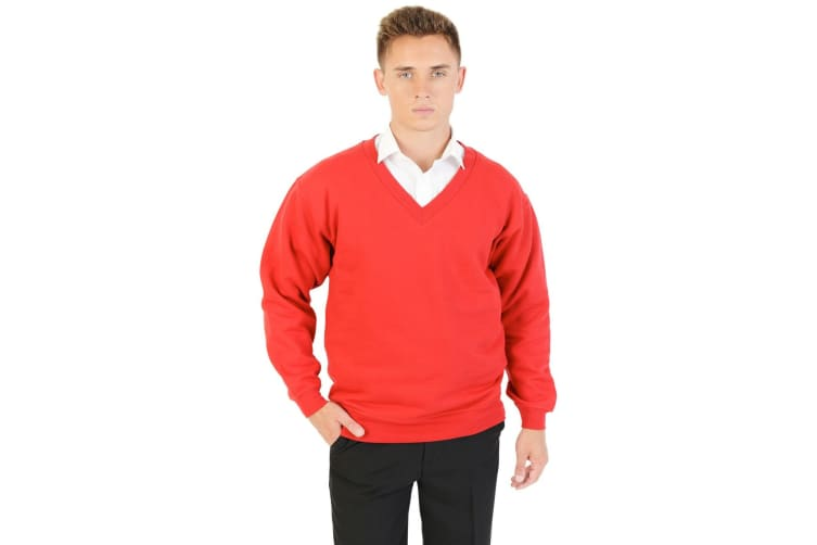 Absolute Apparel Mens V Neck Sweat (Red) (4XL)