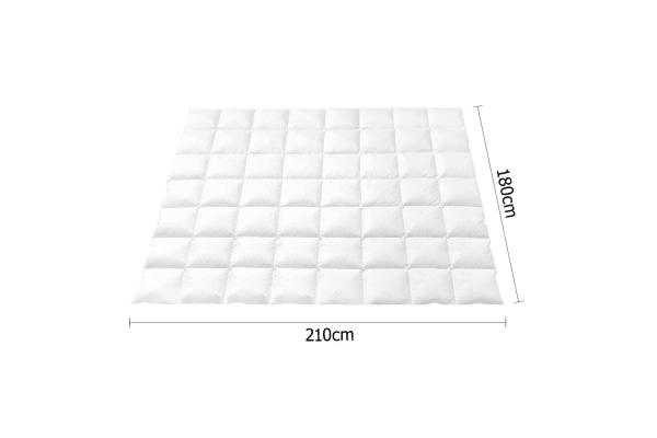 Duck Feathers Down Quilt (Double)