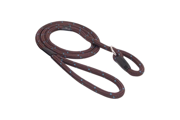 Rosewood Rope Twist Dog Slip Lead (Brown/Teal) (64in)