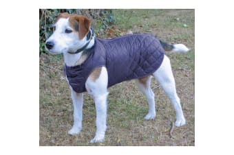 Cosipet Showerproof Step-In-Suit For Dogs (Navy)