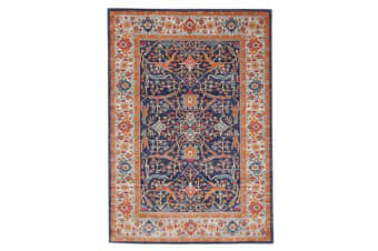 Splash Multi Transitional Rug 230x160cm