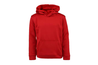 Champion Boys' Solid Performance Pullover Hoodie (Red)