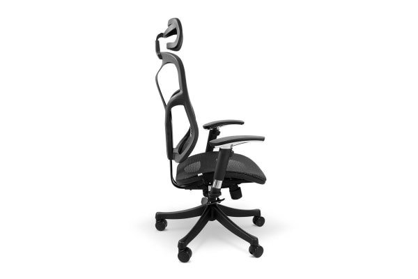 Ergolux EZ8 Ergonomic Mesh Office Chair