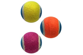 Armitage Good Boy 1 Assorted Go Fetch Super Dog Ball - ASRTD (Assorted)