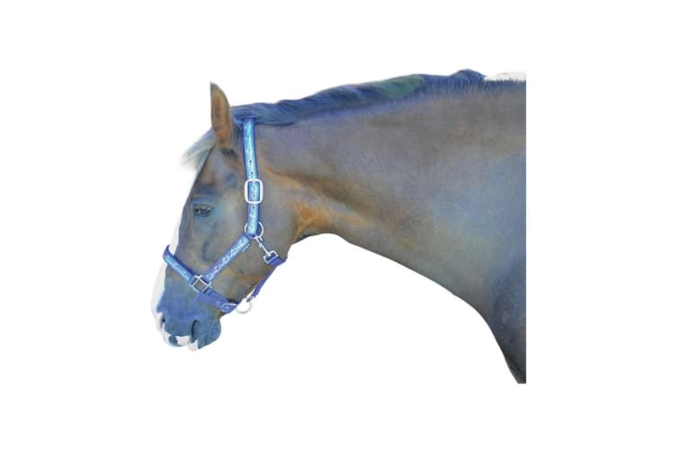 Hy Pony Love Head Collar (Purple/Blue) (Pony)