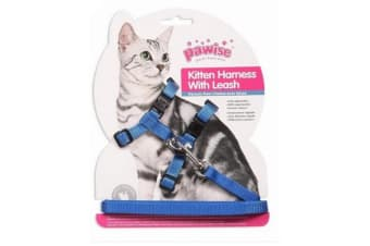 Pawise Kitten Harness And Lead (Blue) (1.2m)