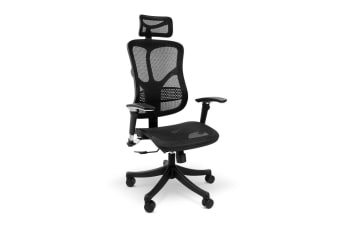 Ergolux Ergonomic Mesh Office Chair