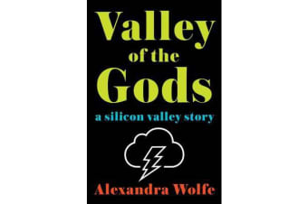 Valley of the Gods - A Silicon Valley Story