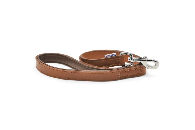 Ancol Pet Products Heritage Vintage Padded Leather Lead (Chestnut) (22mm x 1m)