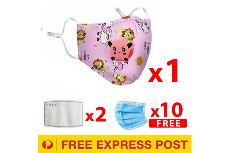 Pink Washable Reusable Anti Air Pollution Face Mask With Respirator &2 Filters for Kids-1 Pack