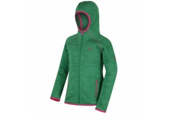 Regatta Great Outdoors Childrens/Kids Dissolver Fleece Jacket (Highland Green) (14-15 Years)