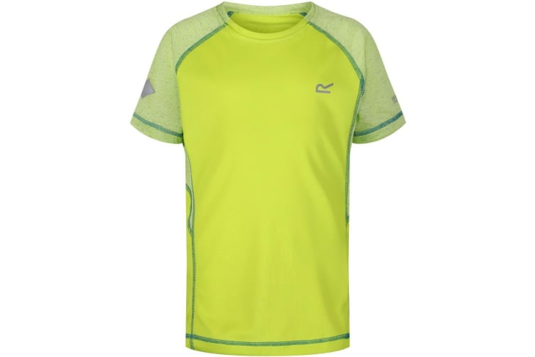 Regatta Childrens/Kids Dazzler II Reflective T-Shirt (Lime Punch/Lime Punch) (11-12 Years)