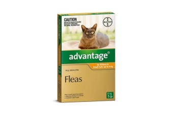 Advantage Small Cat Orange - 4p
