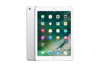 Apple iPad 2017 (128GB, Cellular, Silver)
