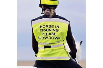 Equisafety Horse In Training Please Slow Down Air Waistcoat (Yellow)