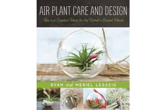 Air Plant Care and Design - Tips and Creative Ideas for the World's Easiest Plants