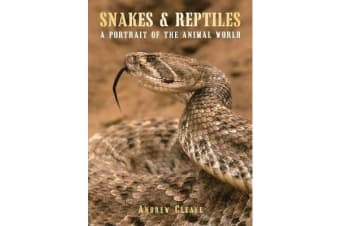 Snakes & Reptiles - A Portrait of the Animal World