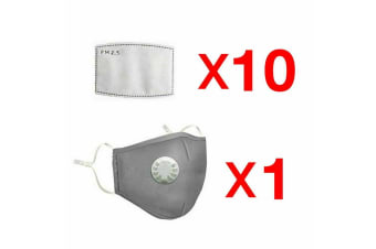 Bushfire Reusable P2 N95 Smoke Pollution Face Mask + Respirator with 10 Filters