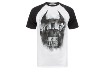 Justice League Mens Character Line Up Raglan T-Shirt (Multicoloured)