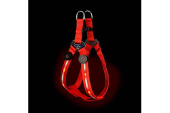 Loomo LED Dog Harness Red - L