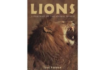 Lions - A Portrait of the Animal World