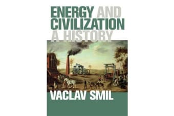 Energy and Civilization - A History