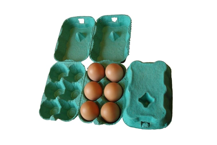 ETON Egg Boxes (Pack Of 24) (Green) (One Size)
