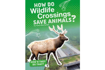 How Do Wildlife Crossings Save Animals?